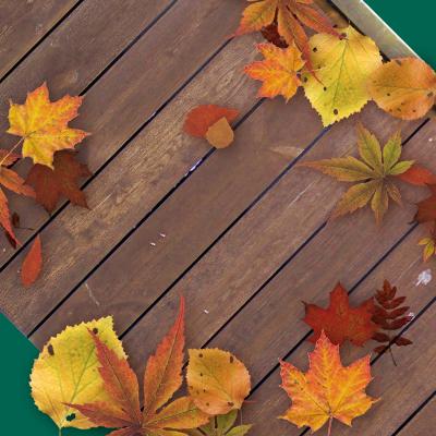 Feature Icon - Autumn Deck